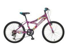b201s0418-violet