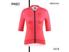 SPAKCT-FAITH2